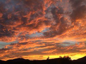 meadow-sunset-web
