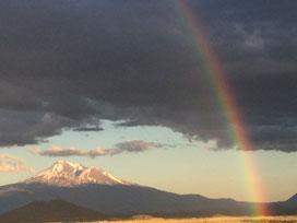 rainbow-griefimg_8208